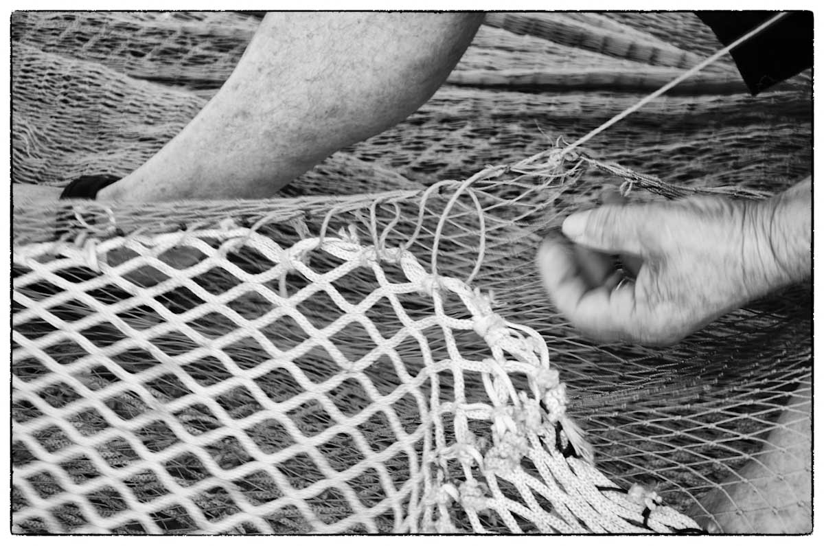 Mercato del pesce nel porto di trapani lorenzo polvani - Rete da pesca per decorazioni ...