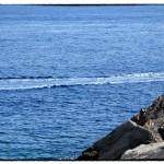 Mare con scia di motoscafo