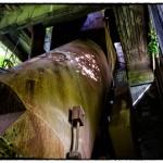 Impianto per la realizzazione della calce alla Lima, Pistoia